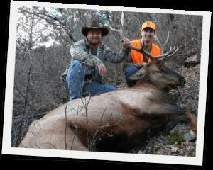 Elk Hunts Gallery Jackson Outfitters