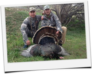 Colorado Turkey Hunts